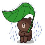 brown_and_cony-15